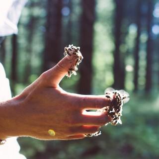 mein honig 3